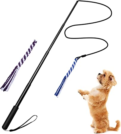 TOOGOO Flirt Pole Rope Tug Dog Toy, Braided Cotton Blend Rope Outdoor Interactive Toy for Pulling, Chasing, Chewing, Training(S Black)