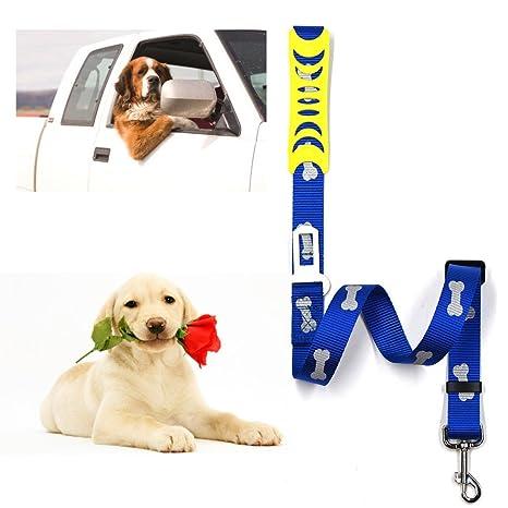 Bescita - Pelota de juguete para perro, arnés para mascota, correa ...