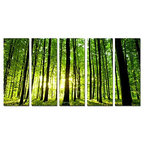Sea Charm - Summer Green Forest Canvas Prints 5 Panel Natural Landscape Wall Art Sunshine in Forest Canvas Wall Art Large Size Total 32