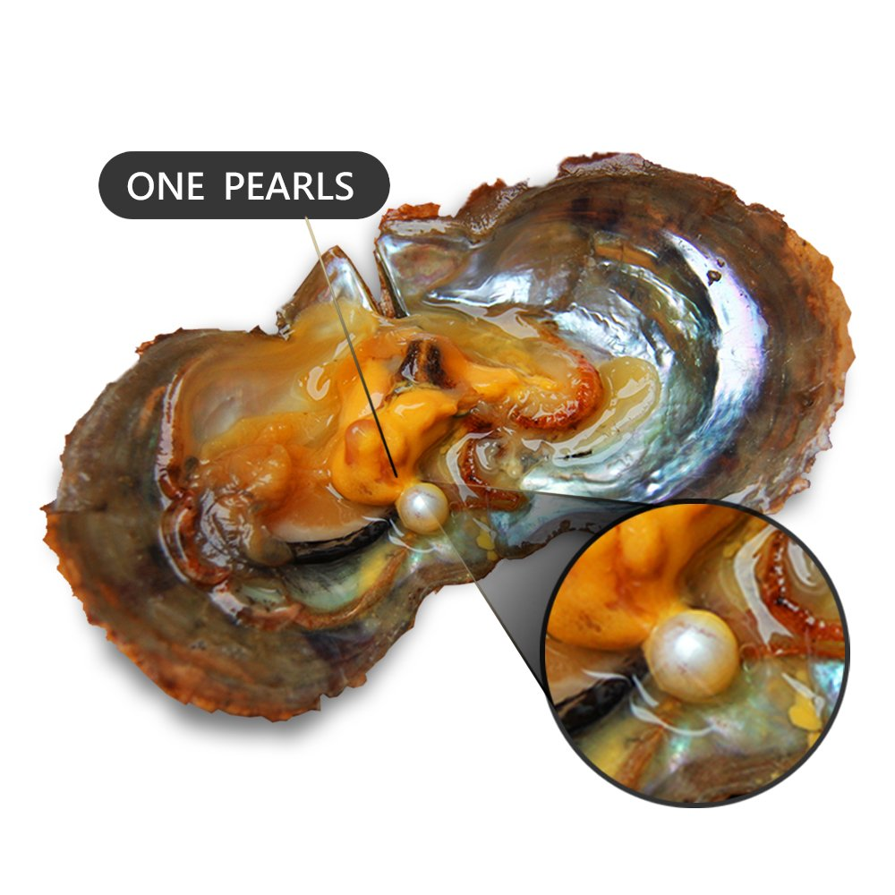 100PCS of Mixed 9 Colors Individual Packed 6-8mm Saltwater Round Akoya Cultured Pearl Oyster by NY Jewelry (Image #3)