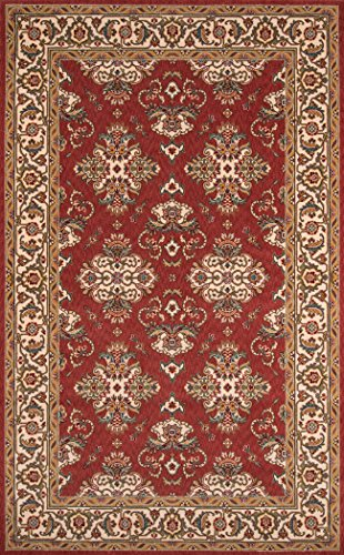 Momeni Rugs Persian Rug (Momeni Rugs PERGAPG-01SAL2030 Persian Garden Collection, 100% New Zealand Wool Traditional Area Rug, 2' x 3', Salmon Red)