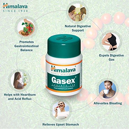 Gasex, Soporte Digestivo Natural | Antiflatulento, alivia el malestar estomacal y la hinchazón | 100 tabletas sin gluten de Himalaya (1-Pack)