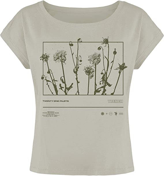 Twenty One Pilots Dandelion Rectangle Mujer Camiseta Gris, Regular: Amazon.es: Ropa y accesorios