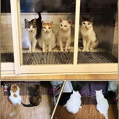 Kyrieval Pinchos Anti Gatos, tiras de espigas para animales de mascotas, repelente para disuasión(2 unidades): Amazon.es: Industria, empresas y ciencia