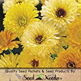 "500 Flower Seeds, Calendula ""Pacific Beauty Yellow"" (Calendula officinalis) Seeds by Seed Needs"