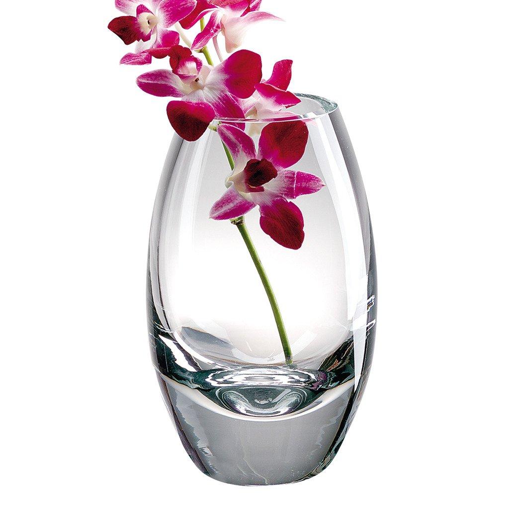 Radiant European Mouth Blown Crystal10 in Vase Badash Crystal Badash