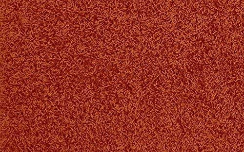 Shaggy Collection Solid Color Shag Area Rugs Burnt Orange, 2 x 3 3 Mat
