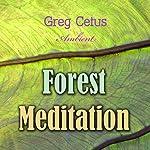 Forest Meditation   Ivan Turgenev