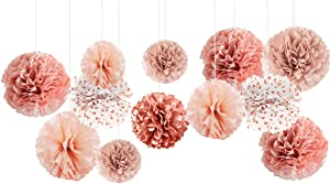 NICROLANDEE Wedding Decorations - 12 PCS Rose Gold Burnt Coral Tissue Paper Pom Poms for Wedding Birthday Bridal Shower Bachelorette Baby Shower Ceiling and Party Backdrop Decor