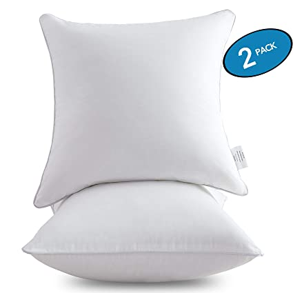 Amazoncom Moma 20 X 20 Pillow Inserts Set Of 2 Throw Pillow