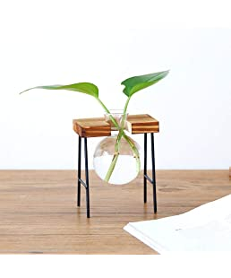 Gaddrt Plant Transparent Vase Creative Hydroponic Wooden Frame Coffee Shop Room Decor (C)