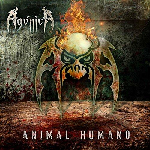 animal-humano
