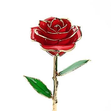 634516a860b zjchao Cadeau Femme - Rose éternelle - idée Cadeau Anniversaire (Rouge)