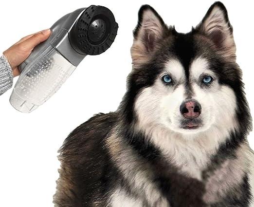 Masajeador aspirador de pelo inalámbrico para perro y gato: Amazon ...