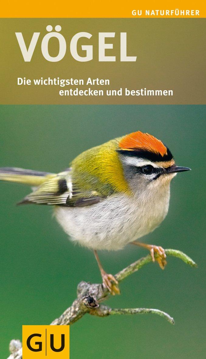 Vögel: Die wichtigsten Arten entdecken und bestimmen