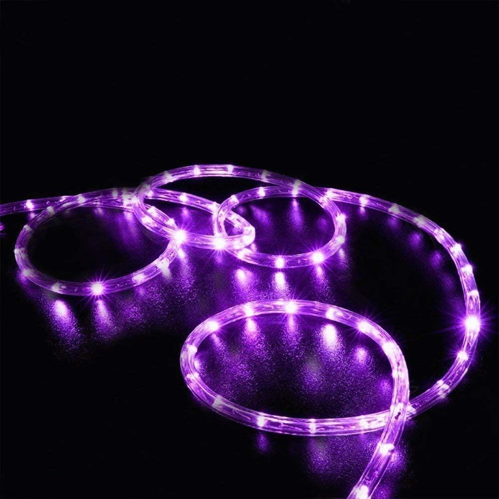 Solar Lichtschlauch EONYUANGUO 33ft 100 LED Lichterketten Wasserdichte Lichterkette aus Kupferdraht Lichterketten mit 2 Modi Lichterketten f/ür den Innen Kaltes Wei/ß und Au/ßenbereich