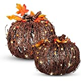 Set of 2 Lighted Twig Pumpkins Indoor Outdoor Fall Porch Decoration Autumn Harvest Thanksgiving Decor