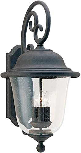 Seagull Lighting 8461-46, Oxidized Bronze
