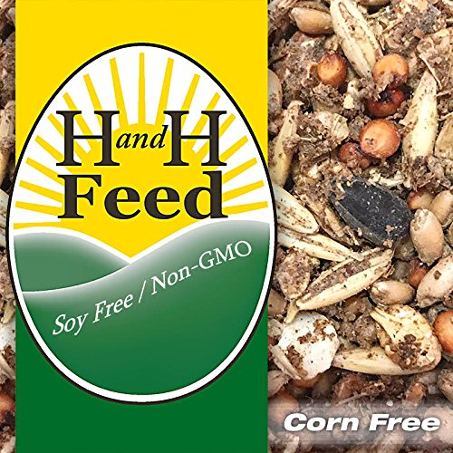 grain chicken feed - 5