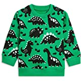 EULLA Little Boys Sweatshirt Toddler Boys Dinosaur Clothes Baby Pullover Sweater Kids Pullover for Boys 1-7 Years Olds