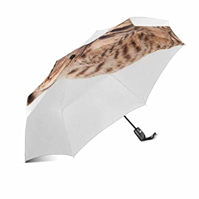 INTERESTPRINT Funny Flying Cat Adorable Animal Windproof Automatic Folding Travel Umbrella, Lightweight Compact Auto Open and Close Umbrella with UV Protection : Garden & Outdoor