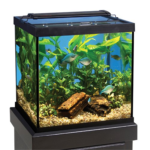 Perfecto Manufacturing APF35721 Glass Canopy Aquarium, 72 by 24-Inch
