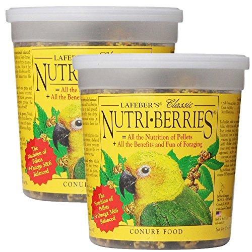 Lafebers Pet Bird (Lafeber Company Nutri-Berries Conure Pet Food, 24-Ounce)