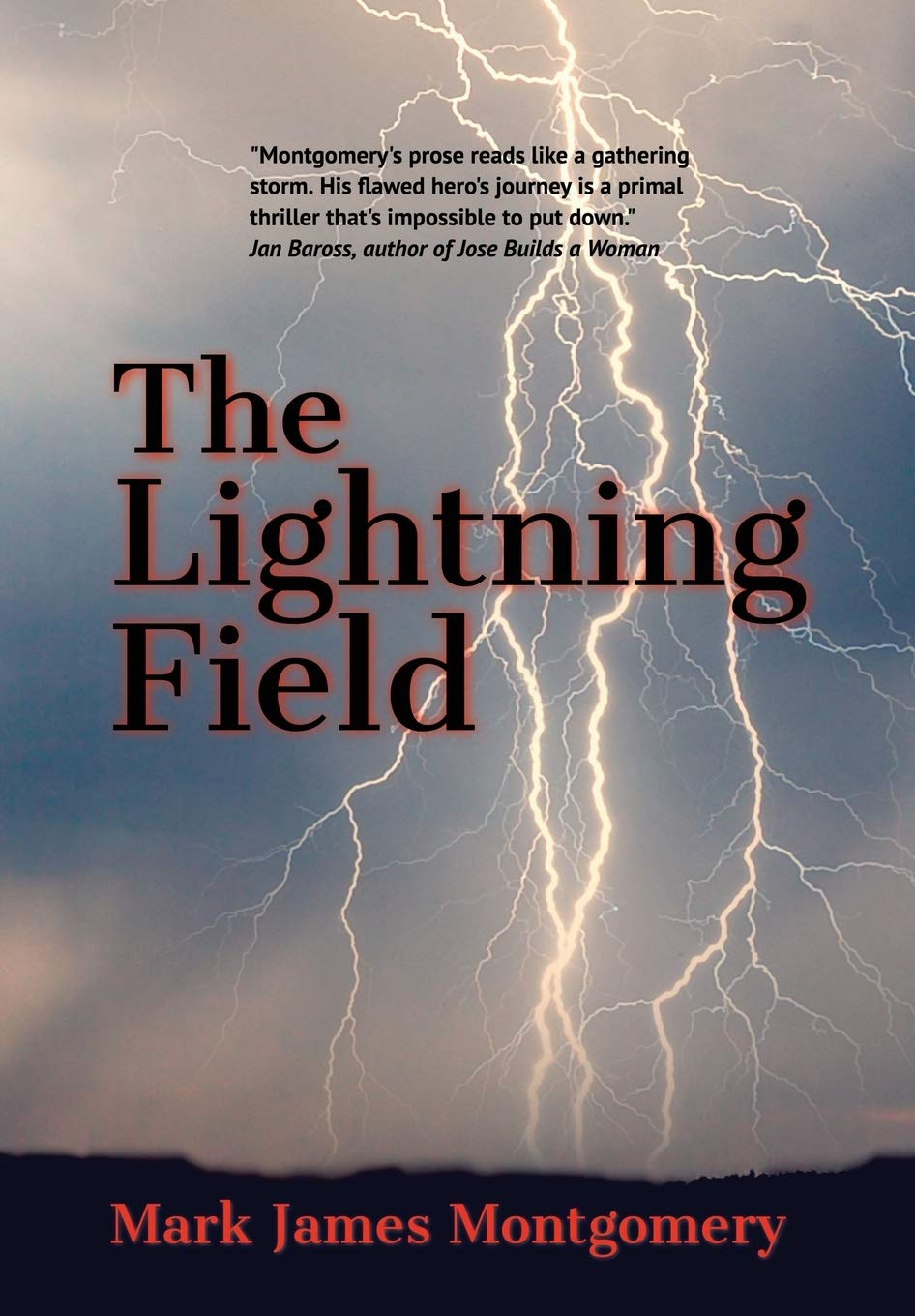 Image result for the lightning field book montgomery