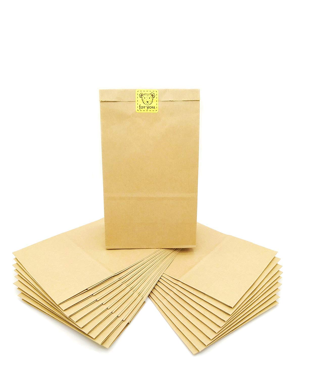 The Paper Bag Company Kraft Paper Bags Grocery Bag Party