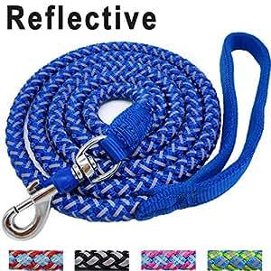 Amazon.com : Mycicy 6 ft Reflective Blue Dog Leash, Best