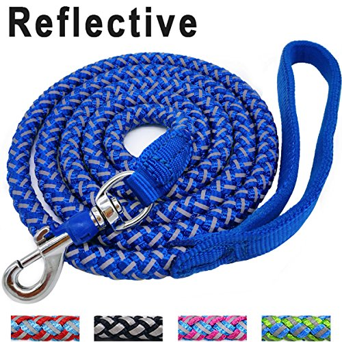 Mycicy 6 ft Reflective Blue Dog Leash, Best Nylon Braided Rope Dog Leash Strong Heavy Duty Dog Leash for Small Medium Large Dogs Walking Leash(Blue (Lead Nylon Reflective Leash)
