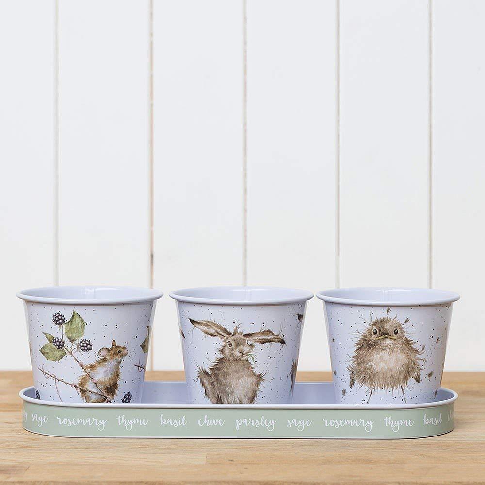 Wrendale Set Of 3 Galvanised Steel Herb Pots Tray