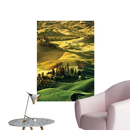 Amazon.com: Jaydevn Tuscan Self Adhesive Wallpaper for Home ...