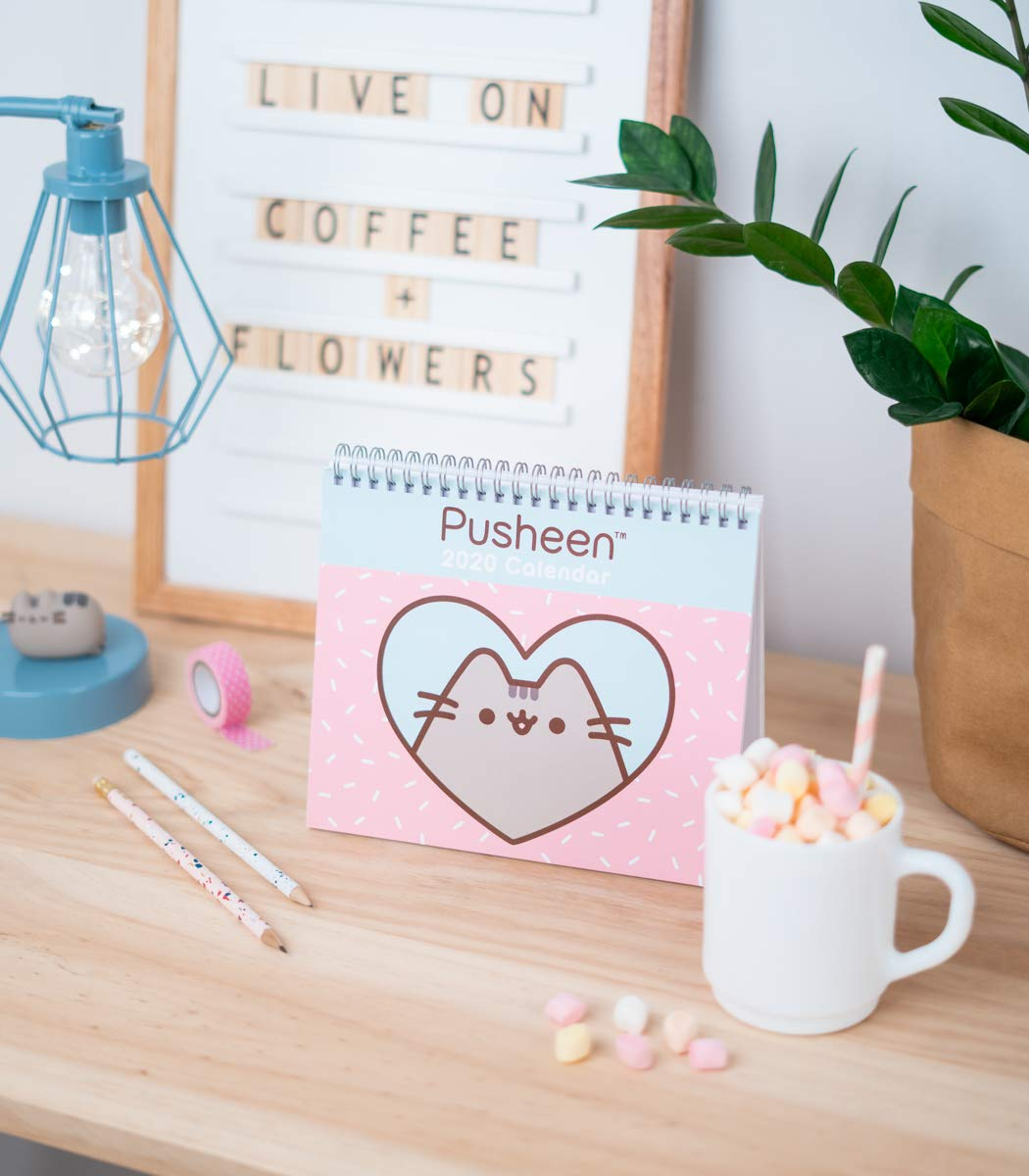 Pusheen Rose Collection Calendario annuale 2020 da scrivania 17x20 cm Erik/® ideale per casa o ufficio