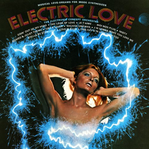 (Electric Love - Musical Love-Dreams for Moog Synthesizer )