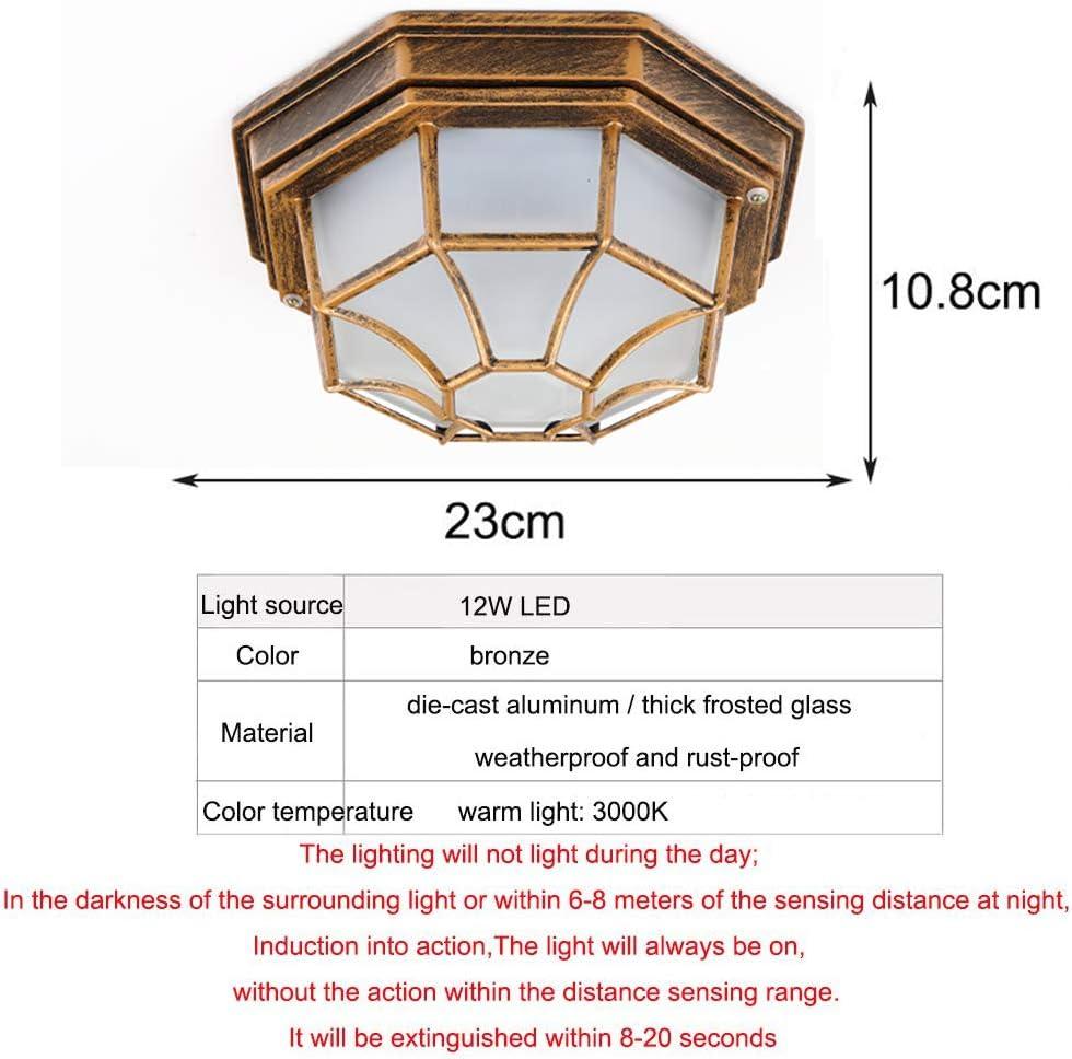 LED Outdoor Wall lumi/ère plafonnier w//d/étecteur de Mouvement IP54 /étanche Vintage ext/érieur Verre M/étal Lumi/ère dext/érieur Lampe de Plafond pour Jardin Garage Patio,Noir,23CM