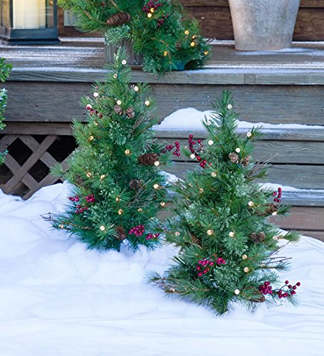Outdoor Lighted Pine Trees - 6