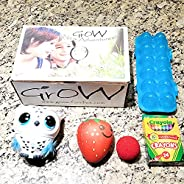 Grow's Monthly Subscription Box for