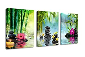 Canvas Painting Wall Art Decor SPA Stone Green Bamboo Pink Waterlily and Frangipani Pictures - 3 Panels Modern Zen Canvas Painting Prints Giclee Art for Home Office and Kitchen Framed Ready to Hang