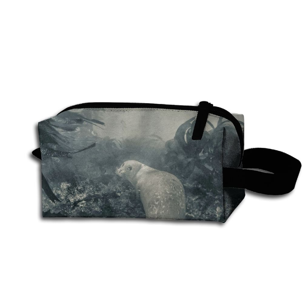 Makeup Cosmetic Bag Animals Sea Lion Zip Travel Portable Storage Pouch For Men Women by Alone