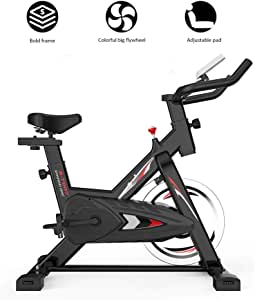WuoooLi Bicicleta de Spinning, Asiento AjustableBicleta de ...