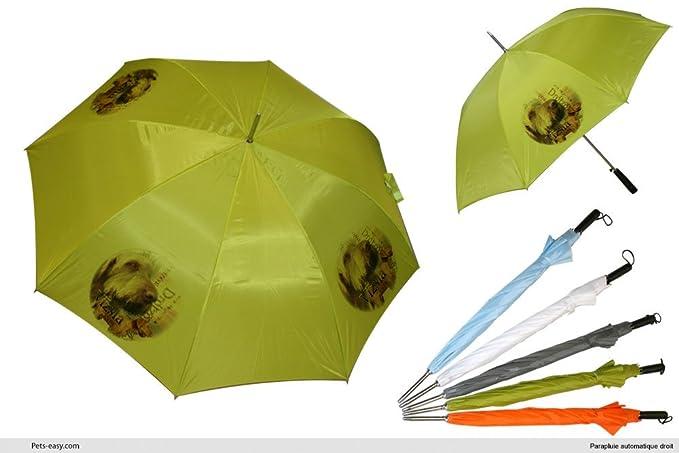 Paraguas de Golf, diseño de braco húngaro, verde (verde) - 239-