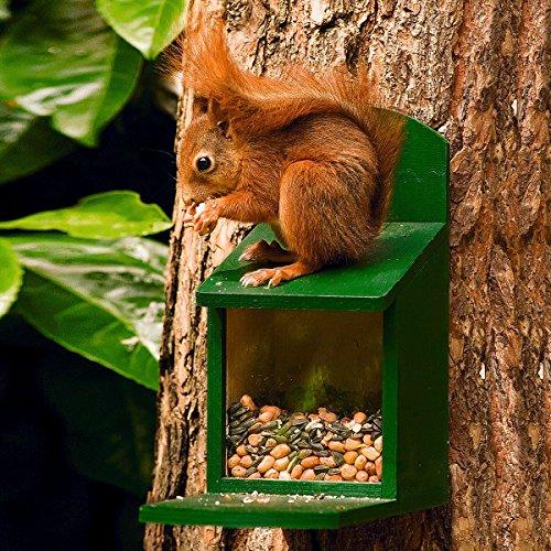 Eichhörnchen Futter 600 gr.