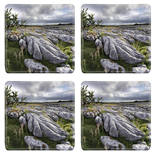 msd-natural-rubber-square-coasters-set-of-4-image-of-nature-landscape-rock-stone-green