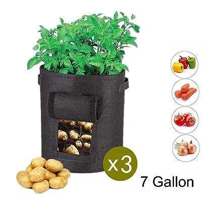 GEMGO 3 Pack Potato Grow Bag, 7 Gallon Aeration Waterproof Fabric Sweet Potato Planter, Velcro Window Vegetable Peanut Growing Box Bucket Pot for Nursery Garden (3 Pack, Black) : Garden & Outdoor