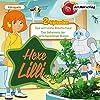 Das verrückte Roboterhaus / Das Geheimnis der verschwundenen Bienen (Hexe Lilli)
