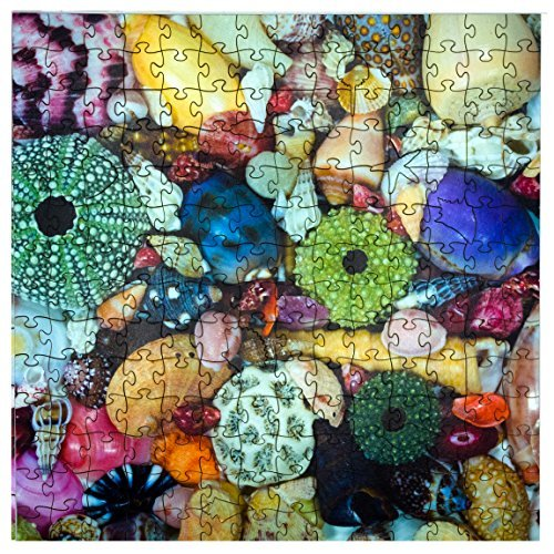 Mosaic Puzzles Wooden Jigsaw Puzzle – Ocean Treasure – 204 Unique Pieces Challenge Any Puzzle Lover from Ages 8 to 98 – Made in The USA by Zen Art & Design made in Massachusetts