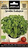 Semillas Ecológicas Aromáticas - Albahaca Gigante Genovese - ECO - Batlle