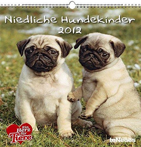 Niedliche Hundekinder 2012