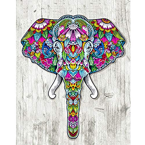 5D DIY Diamond Painting Kit,Cartoon Animal Elephant Partial Special Shaped Drill Diamond Cross Stitch Craft Embroidery (Multicolor, 30X40cm) -
